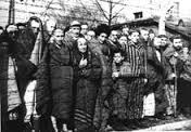 Les opposants à Hitler sont envoyés dès 1933 dans :